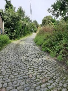 De Molenberg